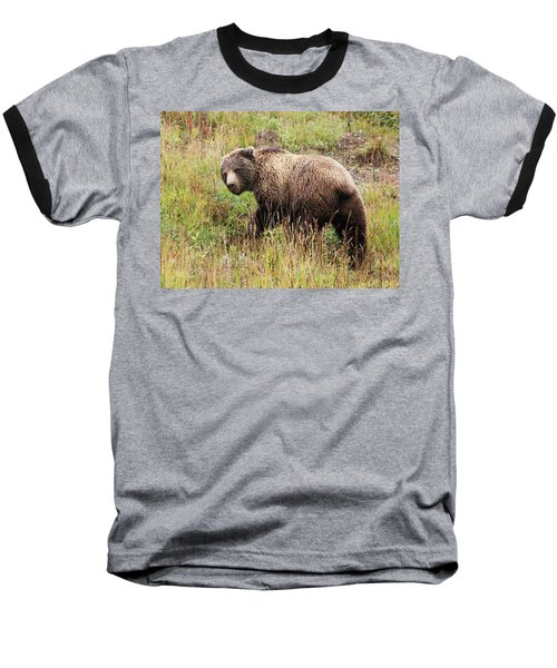 Denali Grizzly Baseball T-Shirt