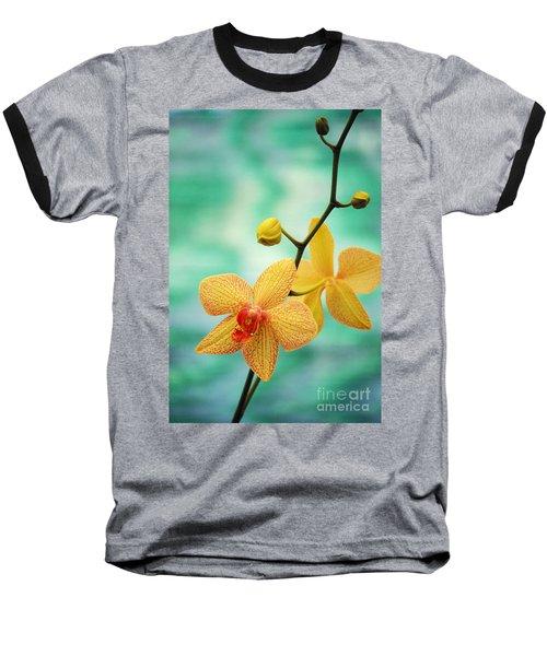 Dendrobium Baseball T-Shirt by Allan Seiden - Printscapes