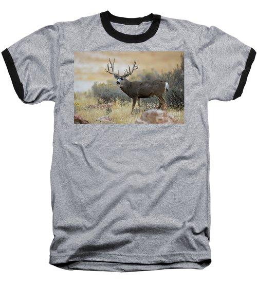 Desert Beast Baseball T-Shirt