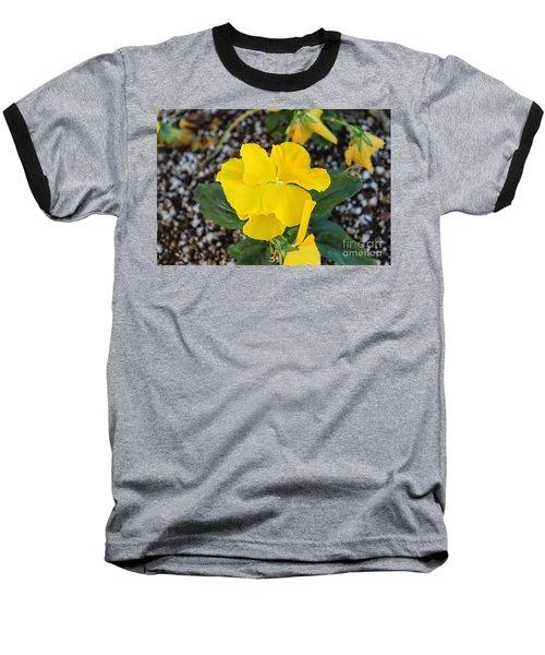 Floral Desert Beauty Baseball T-Shirt