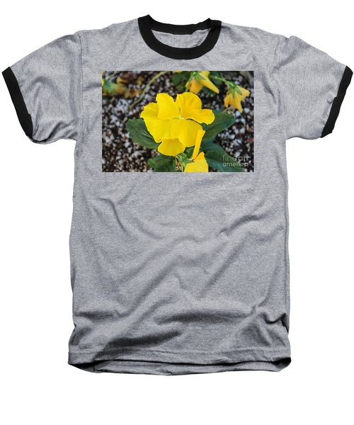 Desert Beauty Baseball T-Shirt by Roberta Byram