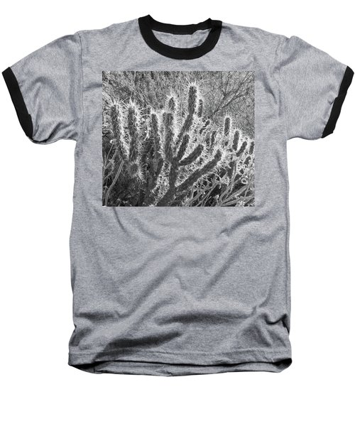 Baseball T-Shirt featuring the photograph Desert Cactus by Frank DiMarco