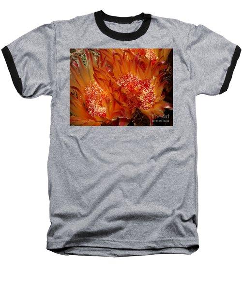 Desert Fire Baseball T-Shirt by Kathy McClure