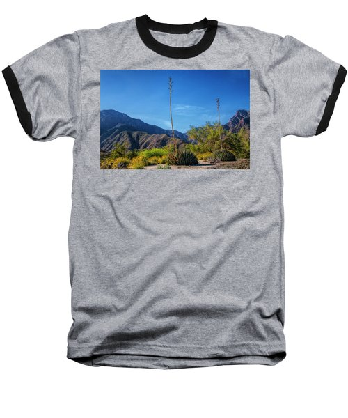 Baseball T-Shirt featuring the photograph Desert Flowers In The Anza-borrego Desert State Park by Randall Nyhof