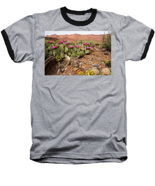 Desert Flowers Baseball T-Shirt
