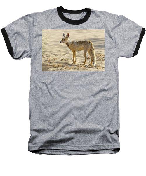 desert Fox 02 Baseball T-Shirt