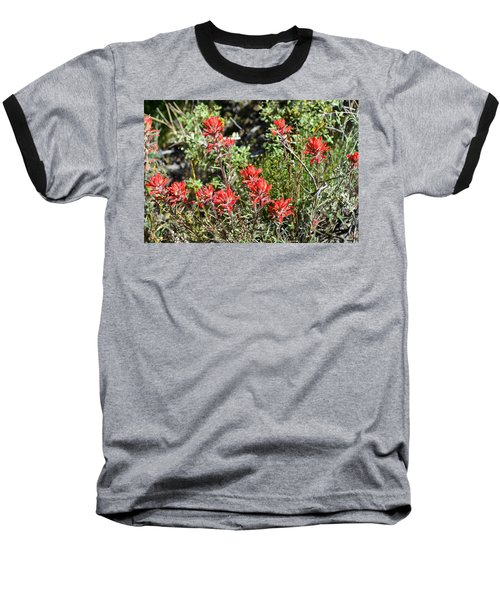Desert Indian Paintbrush - Joshua Tree National Park Baseball T-Shirt by Glenn McCarthy Art and Photography