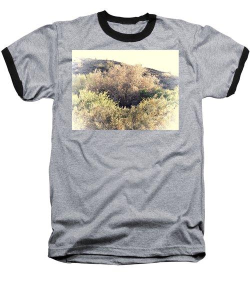 Desert Ironwood Afternoon Baseball T-Shirt