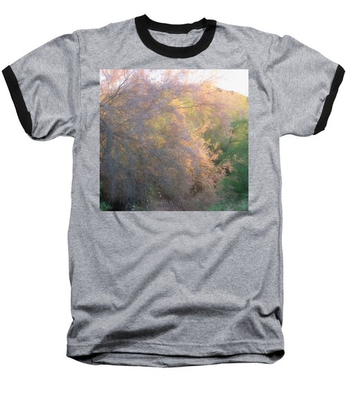 Desert Ironwood Blooming In The Golden Hour Baseball T-Shirt