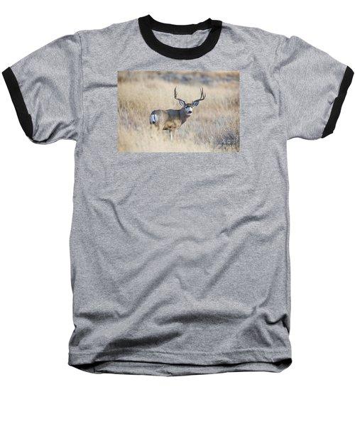 Desert King Baseball T-Shirt