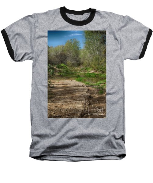 Desert Oasis Baseball T-Shirt by Anne Rodkin