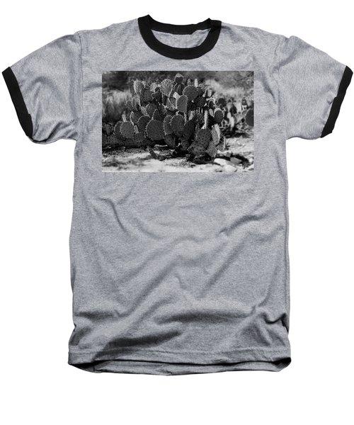 Desert Prickly-pear No7 Baseball T-Shirt