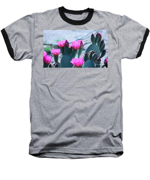 Desert Spring Baseball T-Shirt