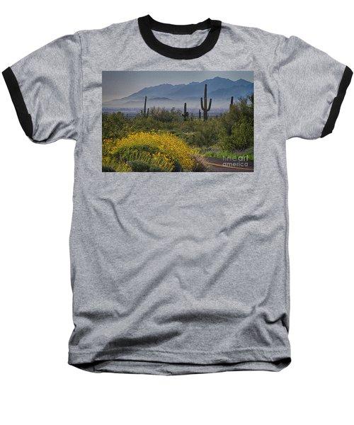 Desert Springtime Baseball T-Shirt by Anne Rodkin