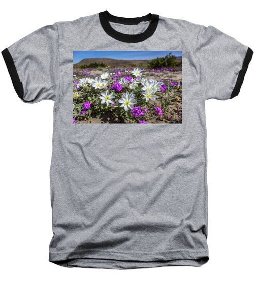Baseball T-Shirt featuring the photograph Desert Super Bloom 2017 by Peter Tellone