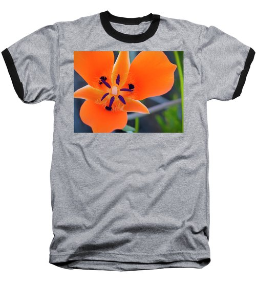 Desert Wildflower Baseball T-Shirt by Penny Lisowski