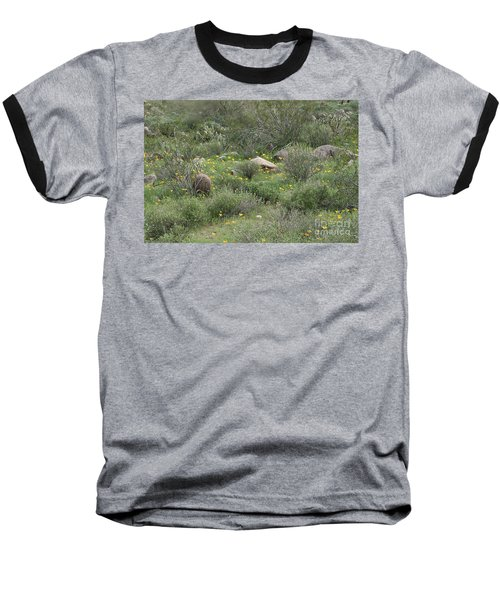 Desert Wildflowers Baseball T-Shirt by Anne Rodkin
