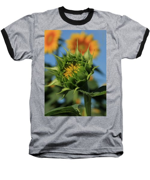 Baseball T-Shirt featuring the photograph Developing Petals On A Sunflower by Chris Berry