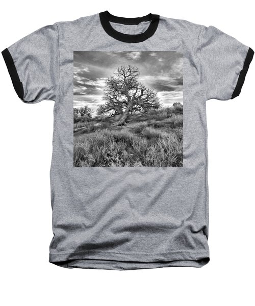 Devils Canyon Tree Baseball T-Shirt