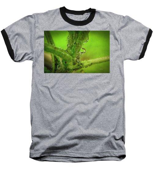 Dew Drop Closeup Baseball T-Shirt
