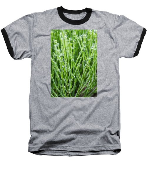 Dew Drop Baseball T-Shirt