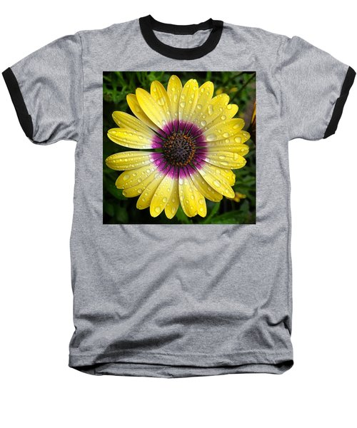 Dew Dropped Daisy Baseball T-Shirt