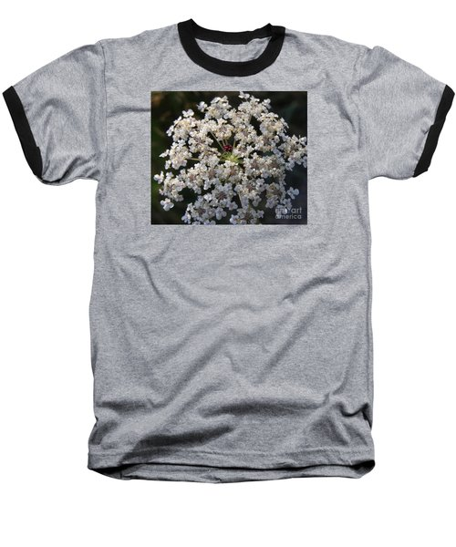 Dew On Queen Annes Lace Baseball T-Shirt