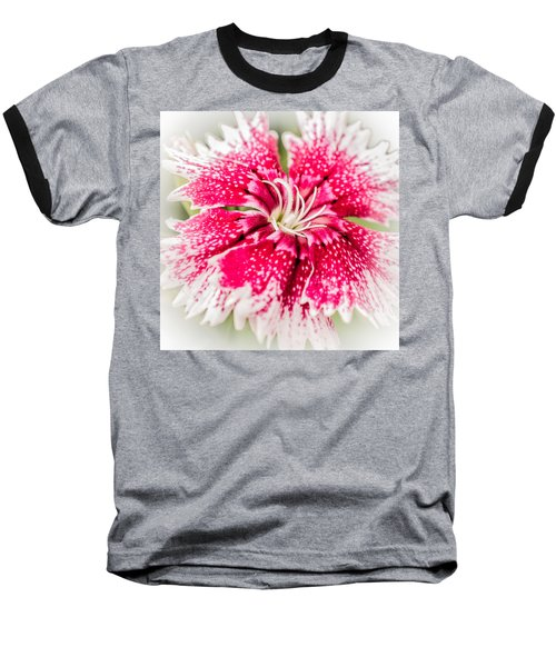 Dianthus Beauty Baseball T-Shirt by Yeates Photography