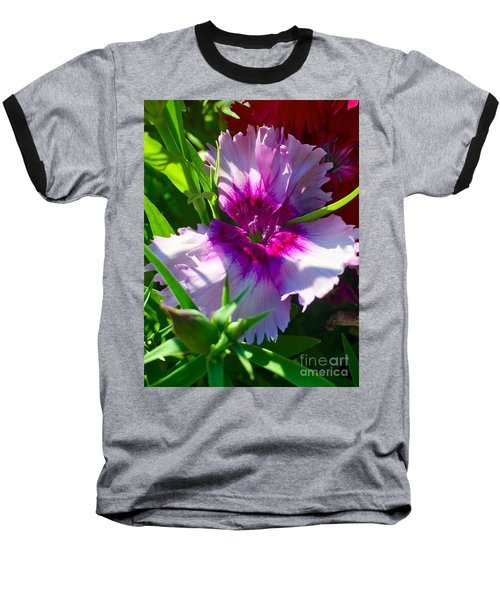 Dianthus Carnation Baseball T-Shirt