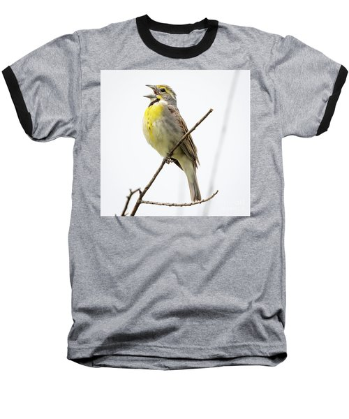 Baseball T-Shirt featuring the photograph Dickcissel  by Ricky L Jones