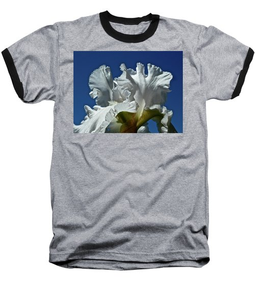 Did Not Evolve Baseball T-Shirt