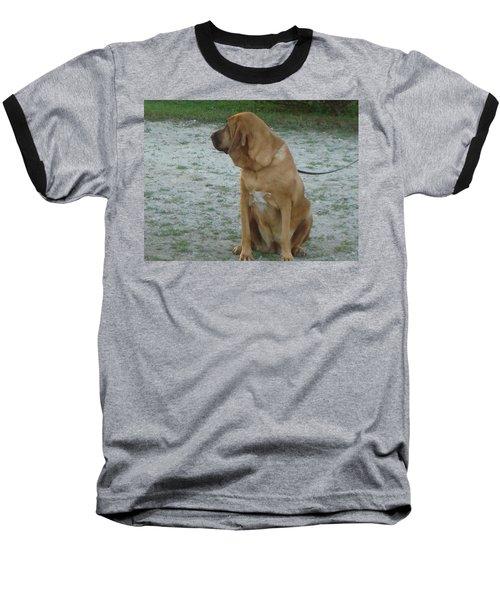 Did You Hear That? Baseball T-Shirt