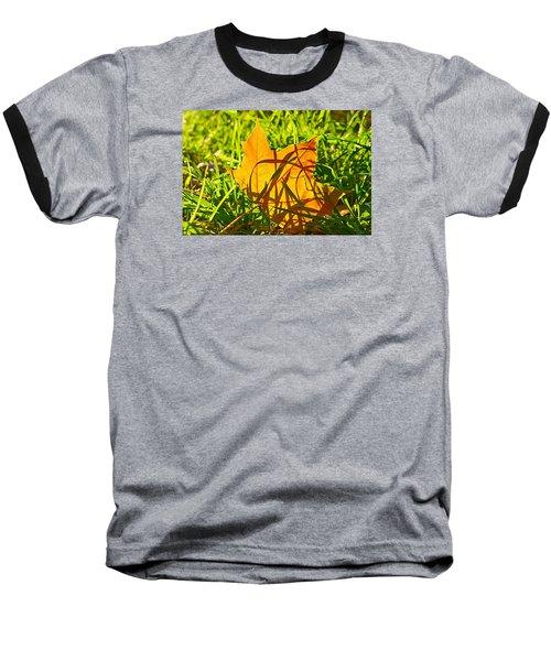 Different Level Baseball T-Shirt