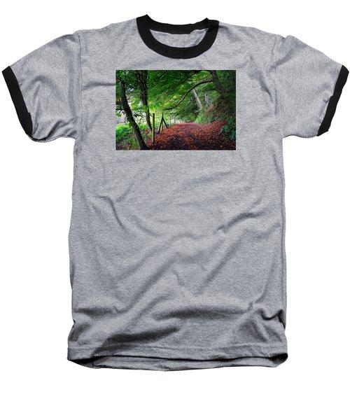 Dinefwr Park 1 Baseball T-Shirt