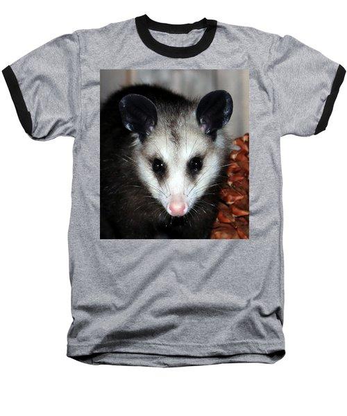 Dining Possums Vii Baseball T-Shirt