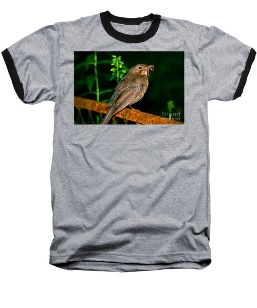 Baseball T-Shirt featuring the photograph Dinner Time  by Mariola Bitner