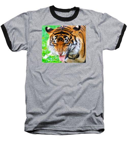 Disgusted Tiger Baseball T-Shirt