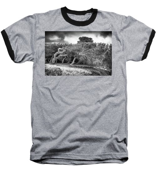 Distorted Trees Baseball T-Shirt