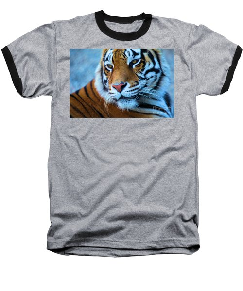 Distracted Baseball T-Shirt