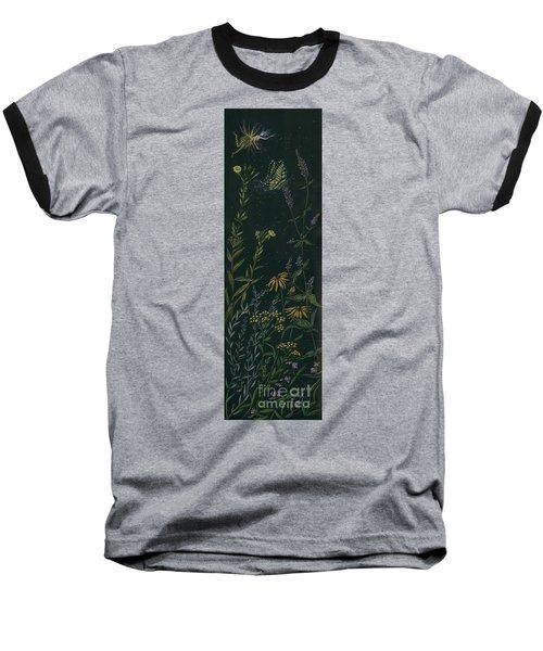 Ditchweed Fairy Tiger Swallowtail Baseball T-Shirt by Dawn Fairies