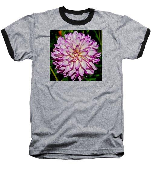 Divine Dahlia Blessings  Baseball T-Shirt