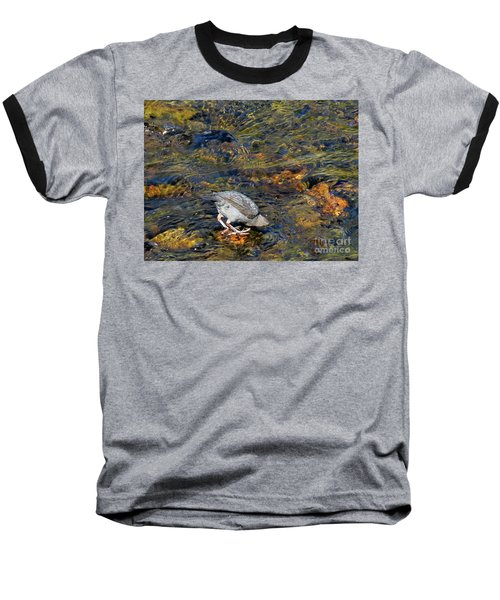 Baseball T-Shirt featuring the photograph Diving For Food by Ausra Huntington nee Paulauskaite