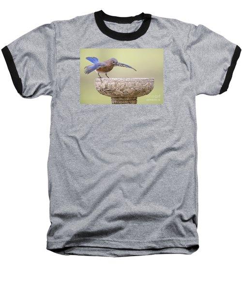 Diving In Baseball T-Shirt