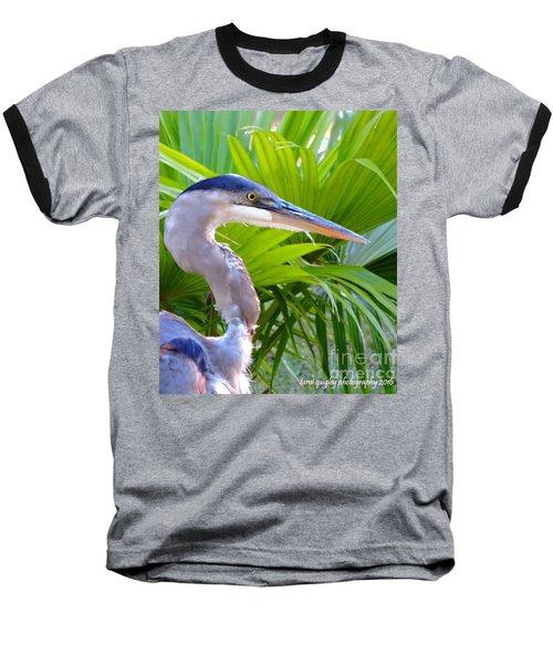 Dixieland Blues Baseball T-Shirt