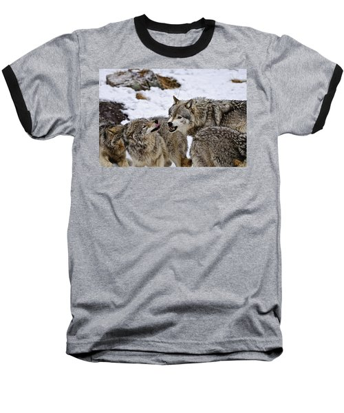 Baseball T-Shirt featuring the photograph Do I Have Your Attention Now by Michael Cummings