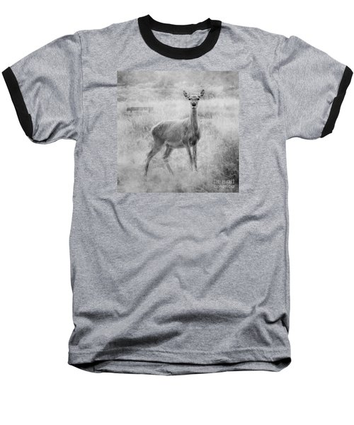Doe A Deer A Female Deer In Mono Baseball T-Shirt by Linsey Williams