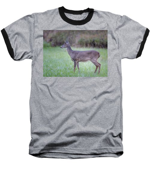 Baseball T-Shirt featuring the photograph Doe In Cades Cove by Tyson Smith