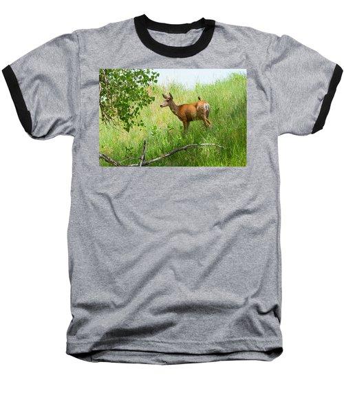 Doe Meets Bird 1 Baseball T-Shirt