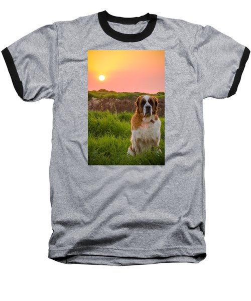Dog And Sunset Baseball T-Shirt