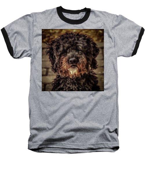 Dog  Baseball T-Shirt